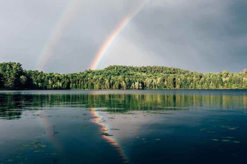 photo of rainbow above trees
